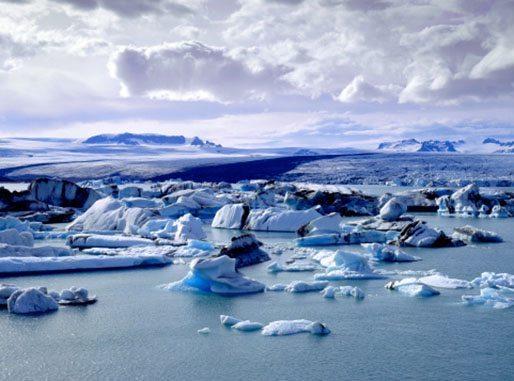 Artic region