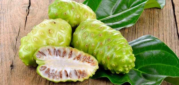 noni fruit for health